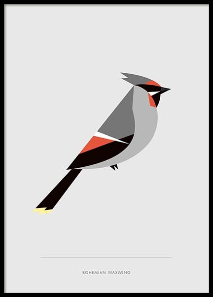 Bohemian waxwing Poster in the group Prints / Sizes /  at Desenio AB (10017)