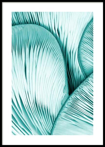 Mint Oyster Poster in the group Prints / Sizes / 50x70cm | 20x28 at Desenio AB (10042)