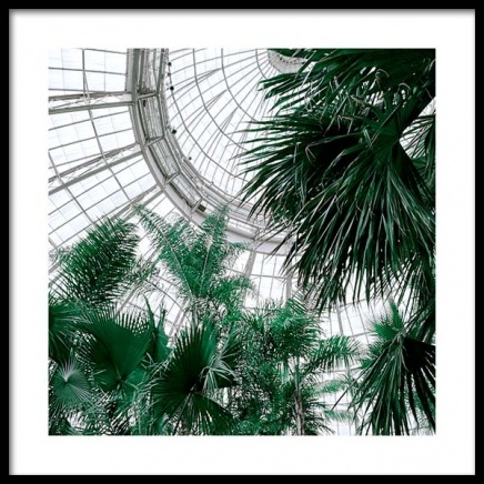Botanical Garden No1 Poster in the group Prints / Sizes / 50x50cm | 20x20 at Desenio AB (10141)