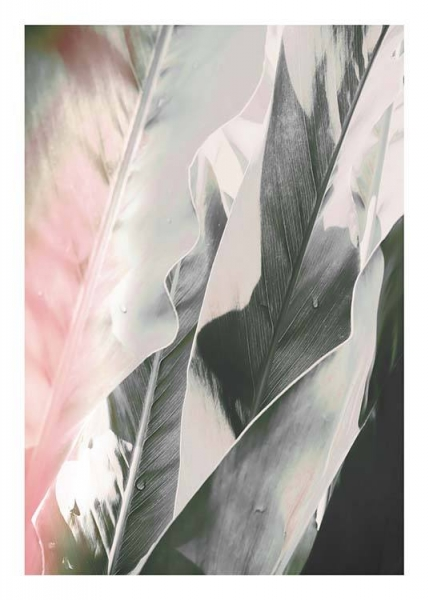 Soft Jungle One Poster in the group Prints / Floral at Desenio AB (10175)