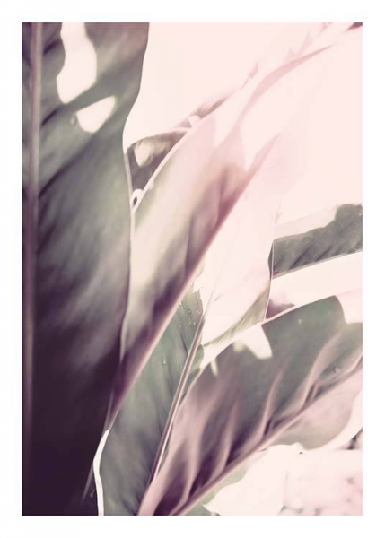 Soft Jungle Two Poster in the group Prints / Floral at Desenio AB (10176)