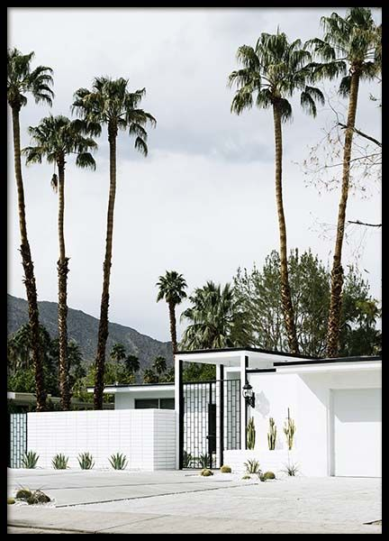 White House Palm Springs Poster in the group Prints / Nature at Desenio AB (10221)