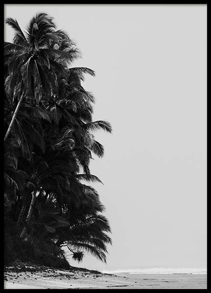 Palm Trees By Sea Poster in the group Prints / Nature at Desenio AB (10235)