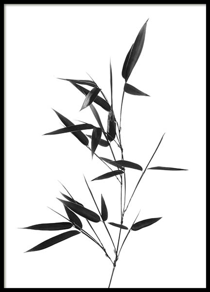 Bamboo Twig Poster in the group Prints / Floral at Desenio AB (10390)