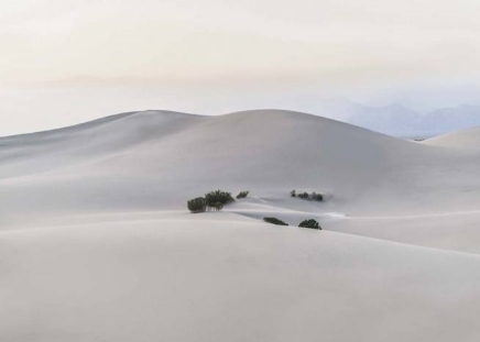 Sand Desert Poster in the group Prints / Nature at Desenio AB (10396)