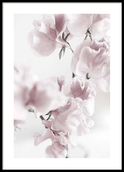 Summer Dream No1 Poster in the group Prints / Floral at Desenio AB (10405)