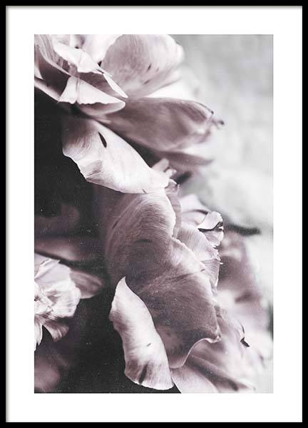 Touch Of Spring Poster in the group Prints / Floral at Desenio AB (10416)