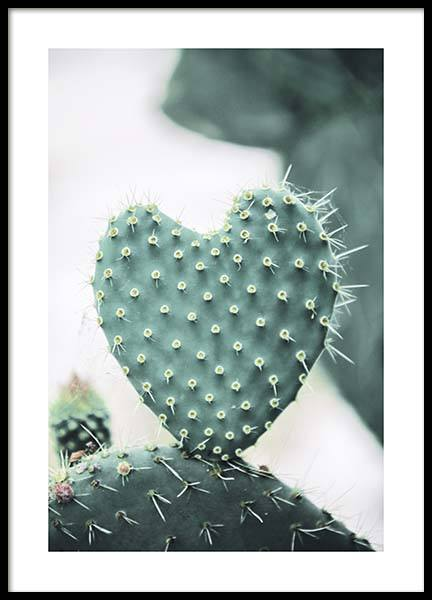 Heart Cactus Poster in the group Prints / Photographs at Desenio AB (10431)