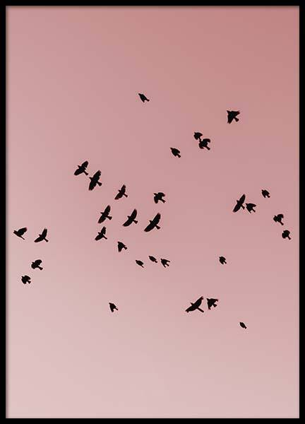 Pink Bird Sky Poster in the group Prints / Nature at Desenio AB (10444)