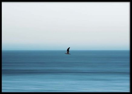 Bird Over Sea Poster in the group Prints / Nature at Desenio AB (10446)