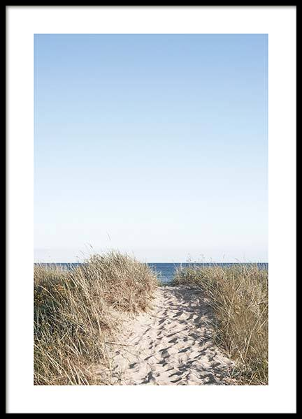 Path on beach Poster in the group Prints / Nature at Desenio AB (10477)