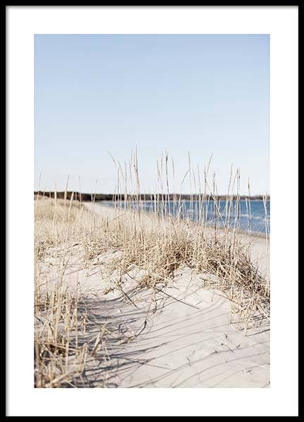 Grass by Sea Poster in the group Prints / Sizes / 50x70cm | 20x28 at Desenio AB (10478)