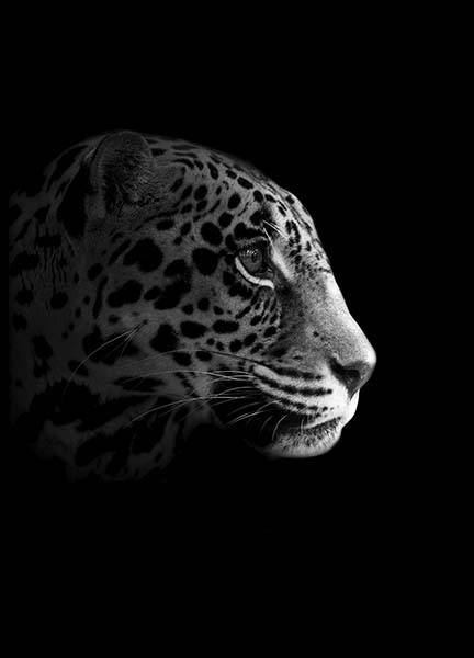 Leopard From Side Poster in the group Prints / Sizes / 70x100cm | 28x39 at Desenio AB (10494)