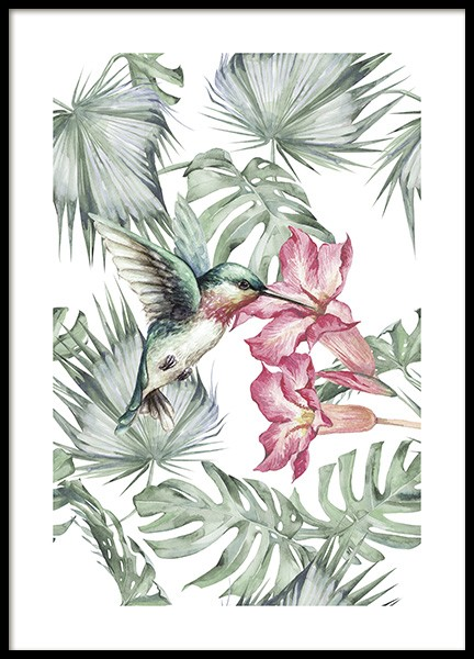 Tropical Bird No1 Poster in the group Prints / Floral at Desenio AB (10648)