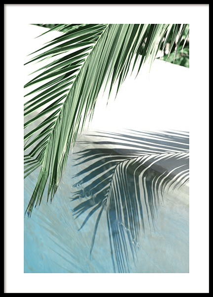 Poolside Palm Reflection Poster in the group Prints / Photographs at Desenio AB (10666)