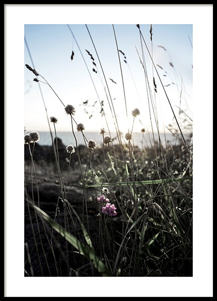 Wildflowers Poster in the group Prints / Nature at Desenio AB (10708)