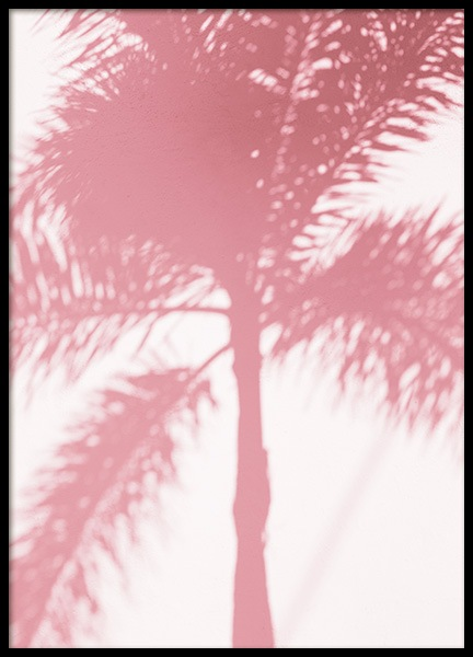 Pink Palm Shadow Poster in the group Prints / Photographs at Desenio AB (10768)