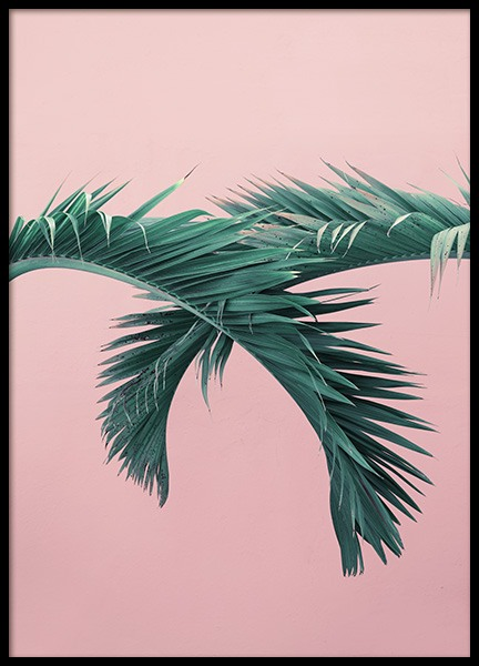 Pink & Green Poster in the group Studio / Coast to coast / Studio Miami at Desenio AB (10771)