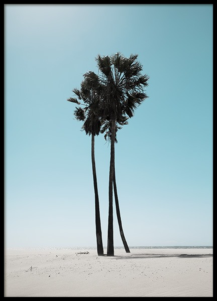 LA Beach Palms Poster in the group Prints / Nature prints at Desenio AB (10784)