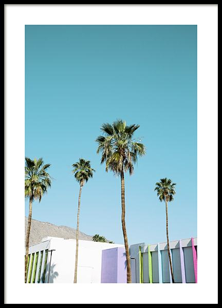 Rainbow Palms Poster in the group Prints / Nature prints at Desenio AB (10789)