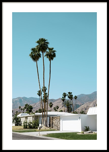 Street of Palm Springs Poster in the group Prints / Sizes / 70x100cm | 27 ½ x 39 ¼' at Desenio AB (10790)