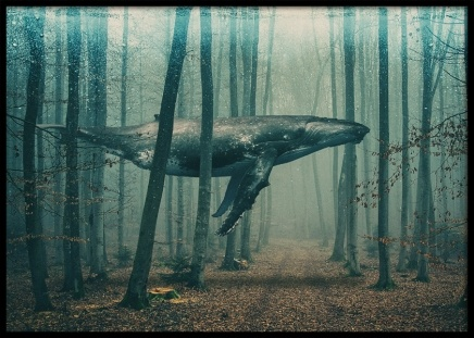 Whale in Forest Poster in the group Prints / Animals at Desenio AB (10801)