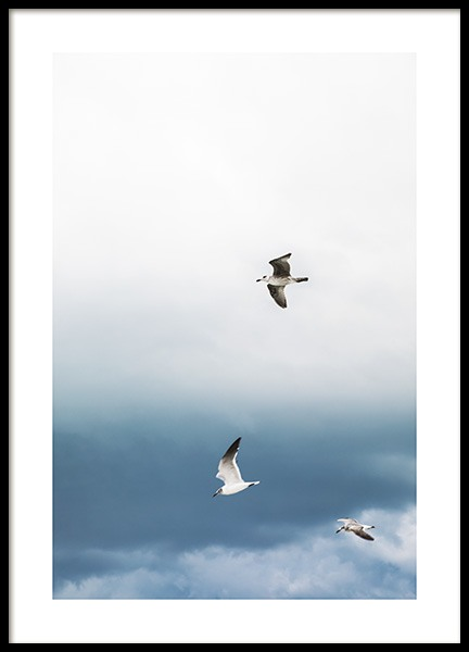 Stormy Birds Poster in the group Prints / Nature at Desenio AB (10819)