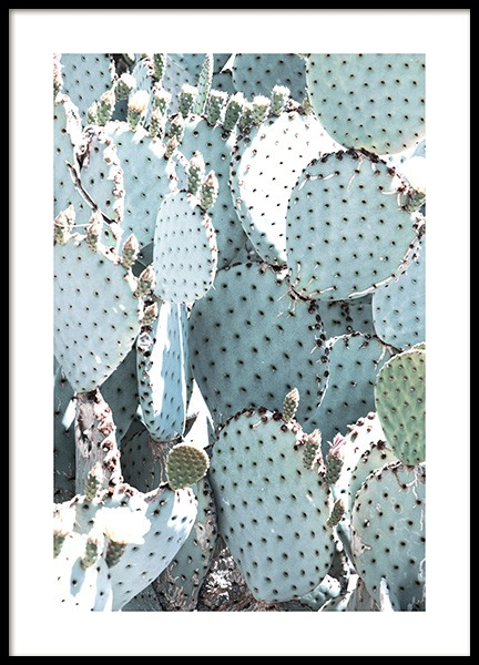 Pastel Pear Cactus No1 Poster in the group Prints / Photographs at Desenio AB (10833)