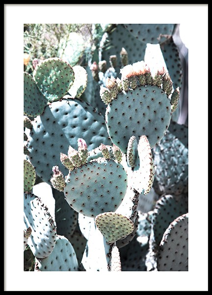 Pastel Pear Cactus No2 Poster in the group Prints / Floral at Desenio AB (10834)