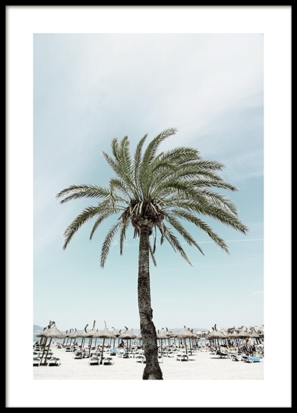 Sunbeds and Palm Tree Poster in the group Prints / Nature at Desenio AB (10893)