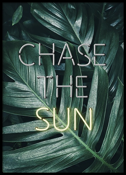Chase the Sun Neon Poster in the group Prints / Floral at Desenio AB (10902)
