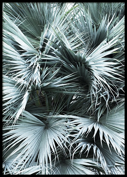 Mint Palms No1 Poster in the group Prints / Floral at Desenio AB (10962)