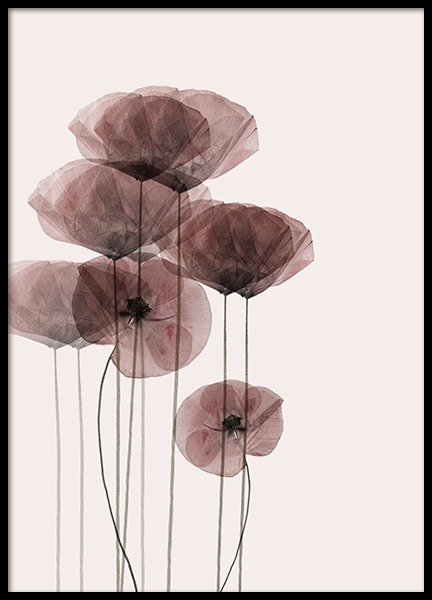 Poppy Bunch Poster in the group Prints / Photographs at Desenio AB (10968)