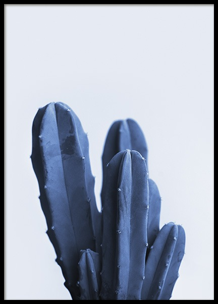 Blue Cactus Poster in the group Prints / Photographs at Desenio AB (10975)