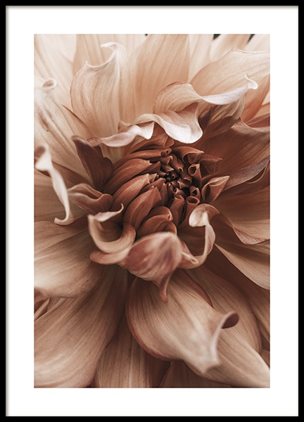Earth Flower Poster in the group Prints / Photographs at Desenio AB (10998)