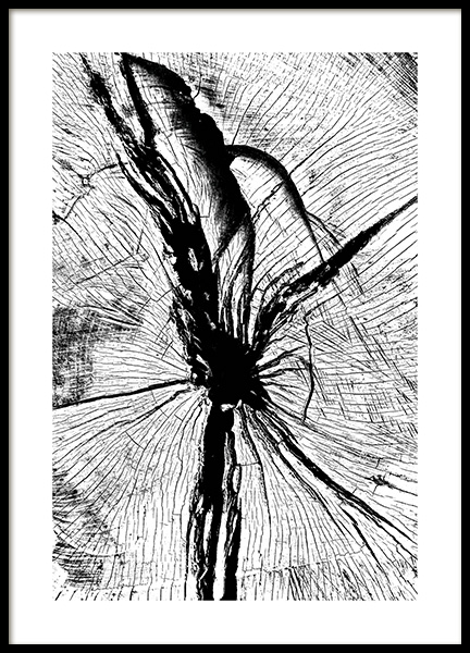Wood Poster in the group Prints / Photographs at Desenio AB (11222)