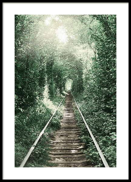 Forest Tunnel Poster in the group Prints / Nature at Desenio AB (11265)