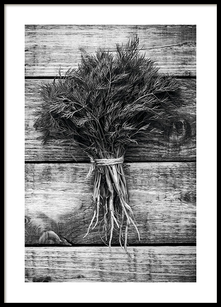Dill Poster in the group Prints / Black & white at Desenio AB (11277)