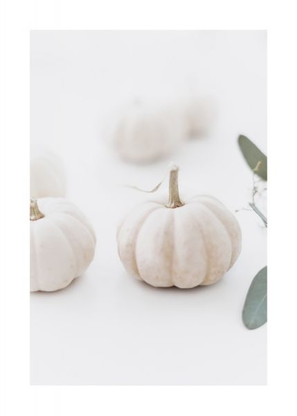 White Pumpkin Poster in the group Prints / Floral at Desenio AB (11496)