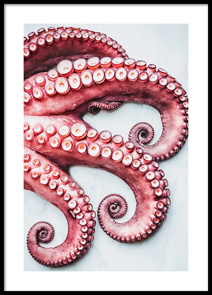 Octopus Arms Poster in the group Prints / Kitchen at Desenio AB (11519)