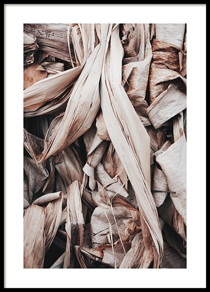 Dry Leaves Poster in the group Prints / Floral at Desenio AB (11577)