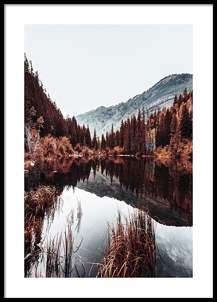 Autumn Lake Poster in the group Prints / Nature at Desenio AB (11584)