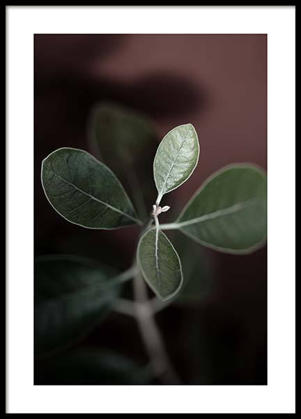 Tiny Leaves No2 Poster in the group Prints / Floral at Desenio AB (11655)
