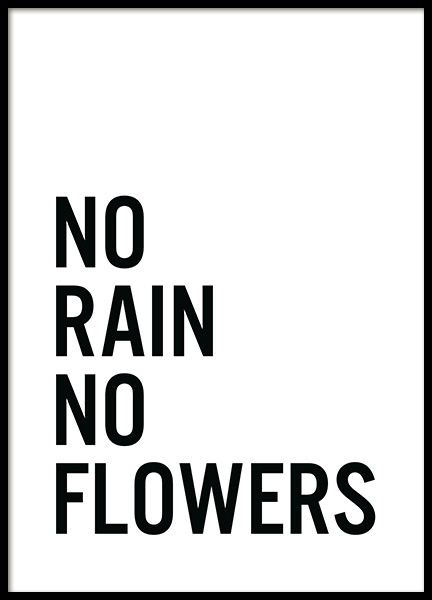 No Flowers Poster in the group Prints / Text posters at Desenio AB (11848)