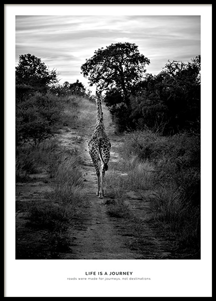 Life is a Journey Poster in the group Prints / Animals at Desenio AB (11858)