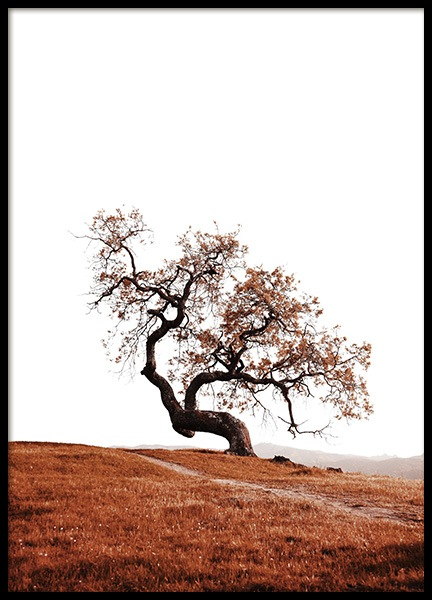 Tree on Hill Poster in the group Prints / Nature at Desenio AB (11869)