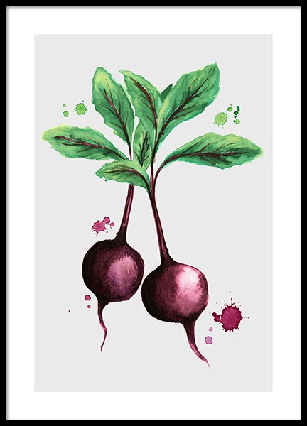 Beetroot Poster in the group Prints / Illustrations at Desenio AB (11962)