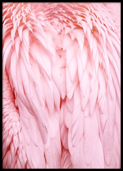 Pink Wings Poster in the group Prints / Photographs at Desenio AB (12019)