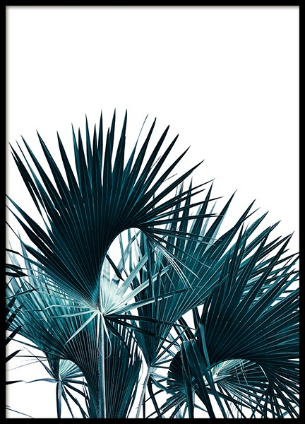 Tropical Palm Leaves Poster in the group Prints / Floral at Desenio AB (12049)