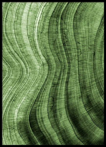 Green Hardwood Poster in the group Prints / Nature at Desenio AB (12084)